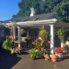 Garden Nursery for Lease