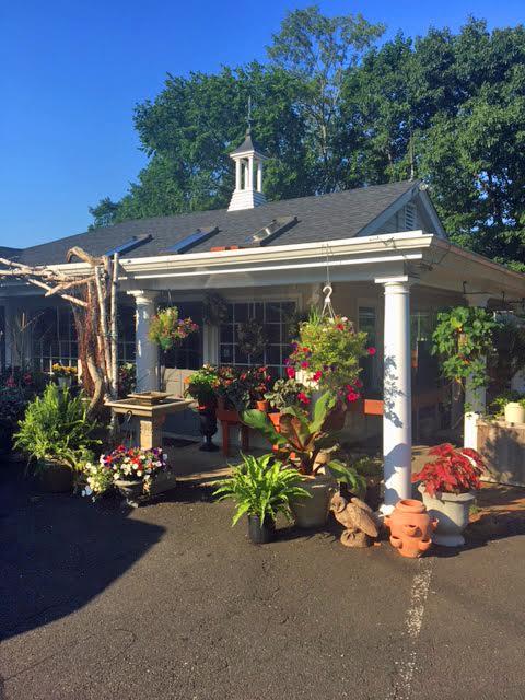 Garden Nursery For Lease